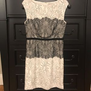 The Limited lace cocktail dress - size 4